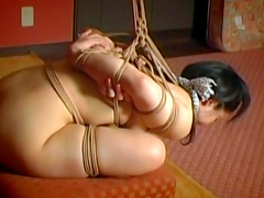 Dark-haired Asian was bonded in BDSM style