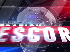Operation Escort - Case 002 - Ariel Grace