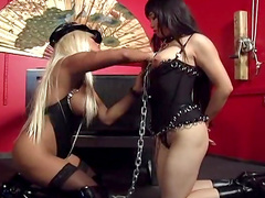 Two slutty babes are fucking each other snatches