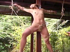 Perverted babe being humiliated with ropes